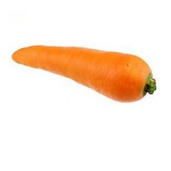 Zanahoria de látex