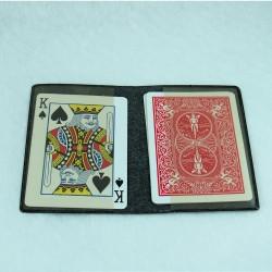Carterita para cartas
